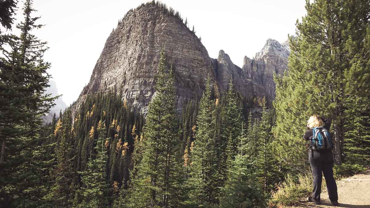 【海外登山】登山初心者にオススメ!レイクルイーズからビッグビーハイブ頂上までトレッキング