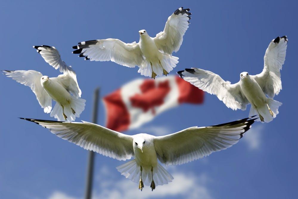 カナダの祝日も避けたほうがいい